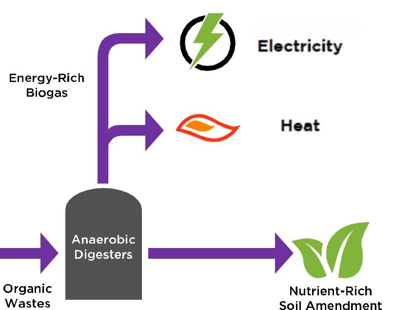 Diagram of the Biogas Utilization Process