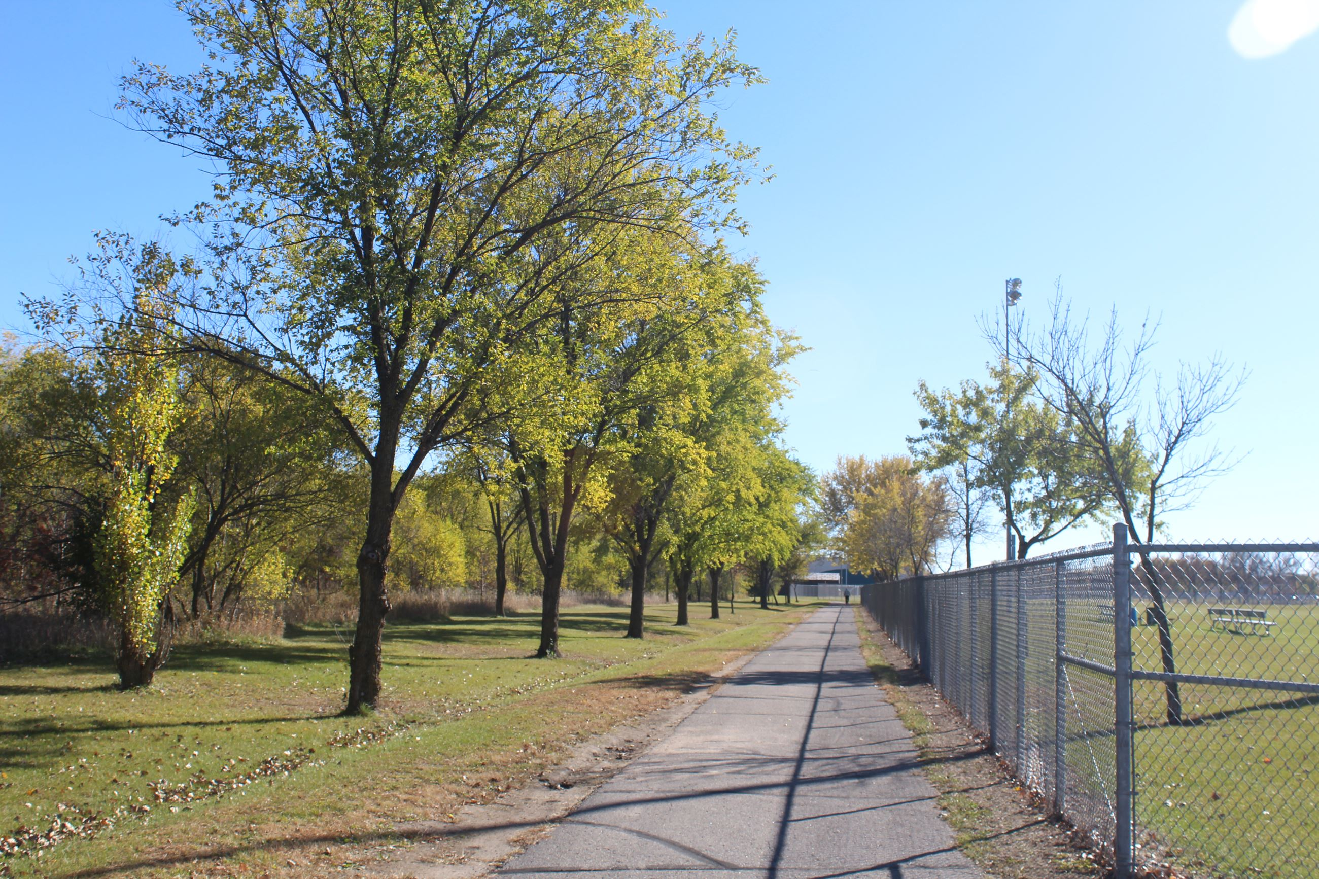 A view down the trail at the Whitney Sports Complex, lined up along the fence of the Whitney Dog Par