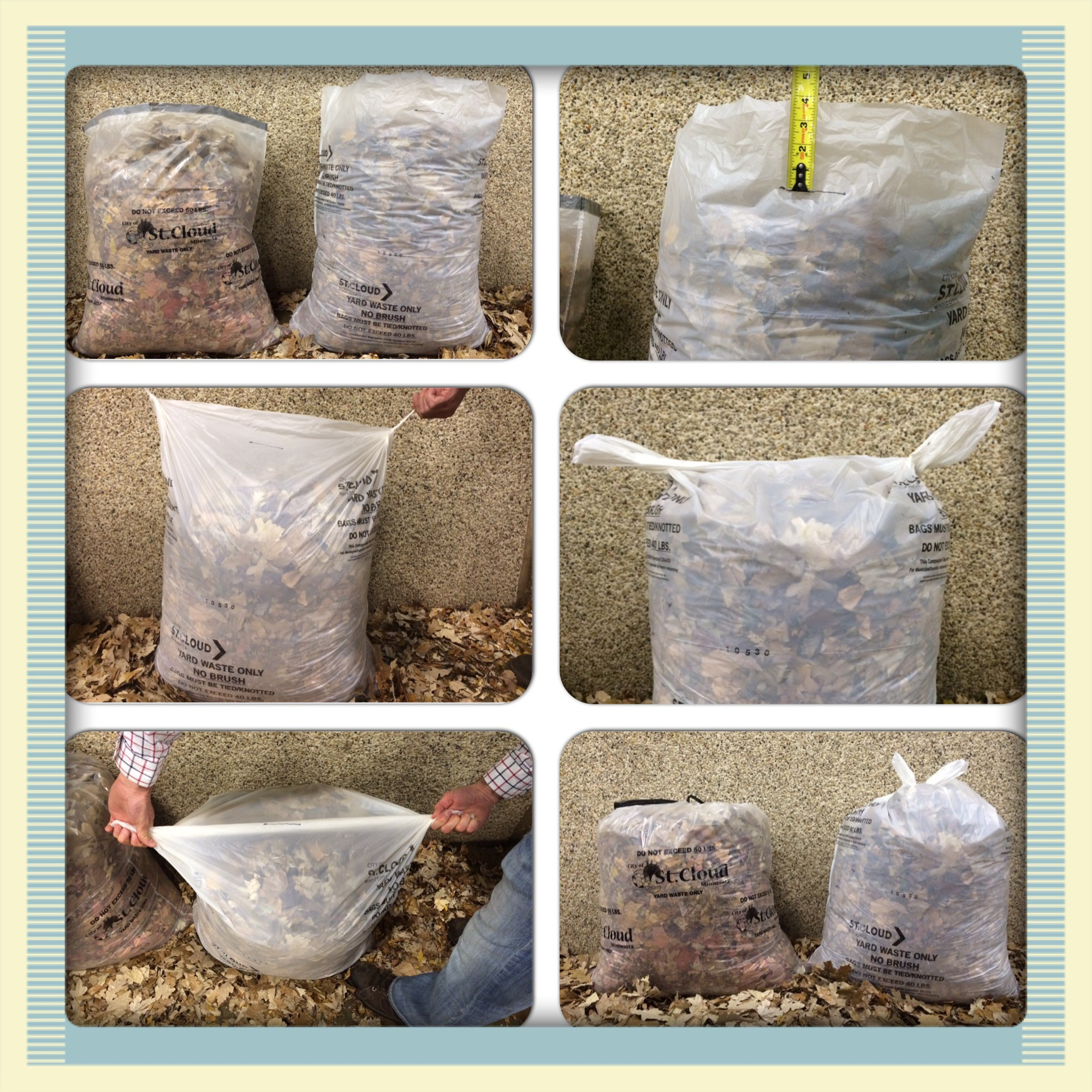 Bag Demo - Compostable Bags (2)