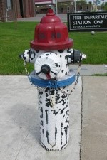 2005 Creative Fire Hydrants