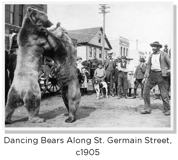 Dancing Bears along St Germain Street c1905