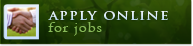 Apply Online for jobs